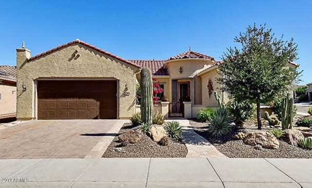 26390 W Cat Balue Drive, Buckeye, AZ 85396 (MLS #5993575) :: The Kenny Klaus Team