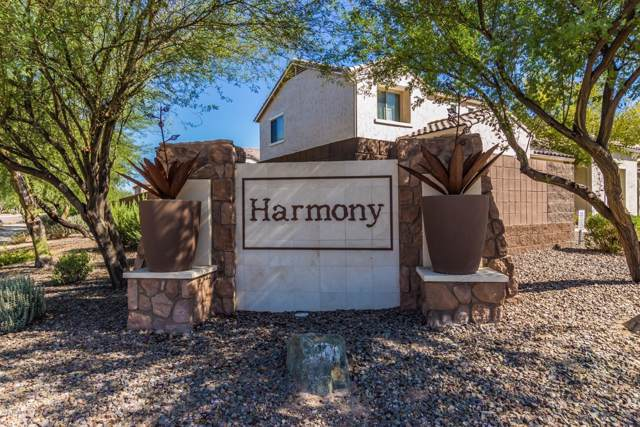 26420 N 53RD Glen, Phoenix, AZ 85083 (MLS #5993586) :: The Laughton Team