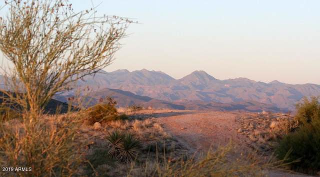 12168 E Redbird Road, Scottsdale, AZ 85262 (MLS #5993607) :: The Pete Dijkstra Team