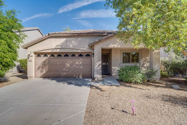 43970 W Lindgren Drive, Maricopa, AZ 85138 (MLS #5993662) :: The Pete Dijkstra Team