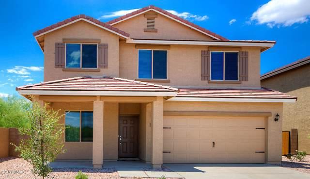 13097 E Desert Lily Lane, Florence, AZ 85132 (MLS #5993692) :: Occasio Realty