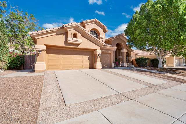 1228 E Squawbush Place, Phoenix, AZ 85048 (MLS #5993699) :: Power Realty Group Model Home Center