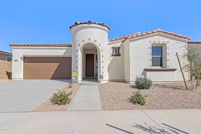 22646 E Via Del Palo, Queen Creek, AZ 85142 (MLS #5993861) :: The C4 Group