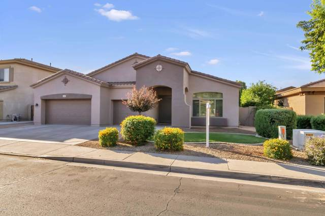 703 E Aquarius Place, Chandler, AZ 85249 (MLS #5993946) :: Kepple Real Estate Group