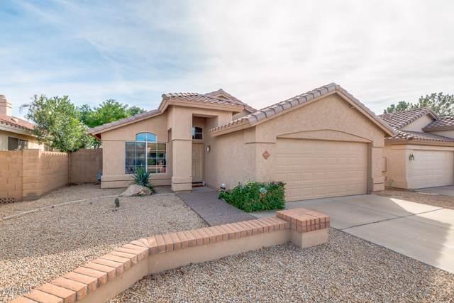 2017 E Helena Drive, Phoenix, AZ 85022 (MLS #5994035) :: The Pete Dijkstra Team