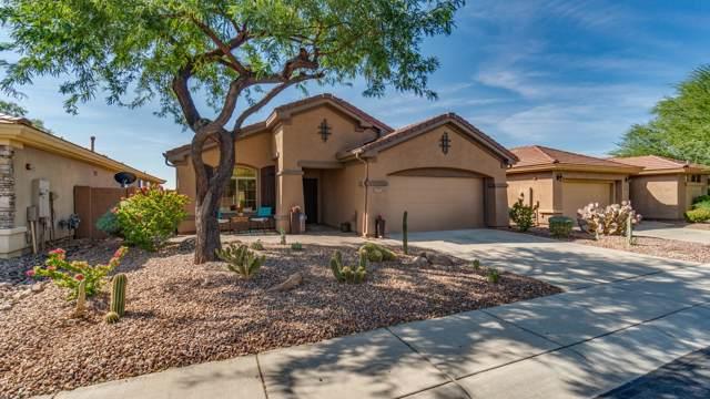 1777 W Dion Drive, Anthem, AZ 85086 (MLS #5994080) :: Kepple Real Estate Group