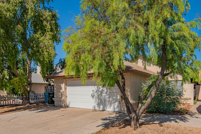 9008 W Indianola Avenue, Phoenix, AZ 85037 (MLS #5994084) :: Team Wilson Real Estate