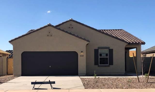37348 W Capri Avenue, Maricopa, AZ 85138 (MLS #5994111) :: CANAM Realty Group