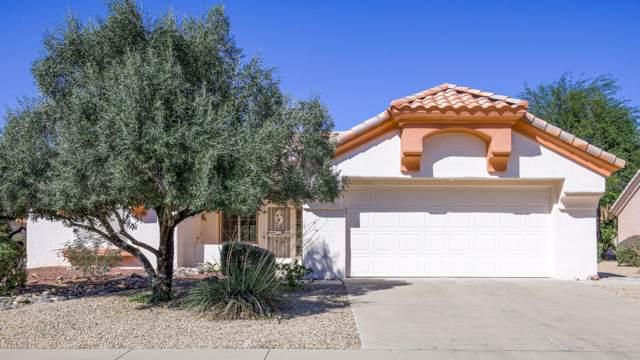14420 W Pecos Lane, Sun City West, AZ 85375 (MLS #5994114) :: Nate Martinez Team