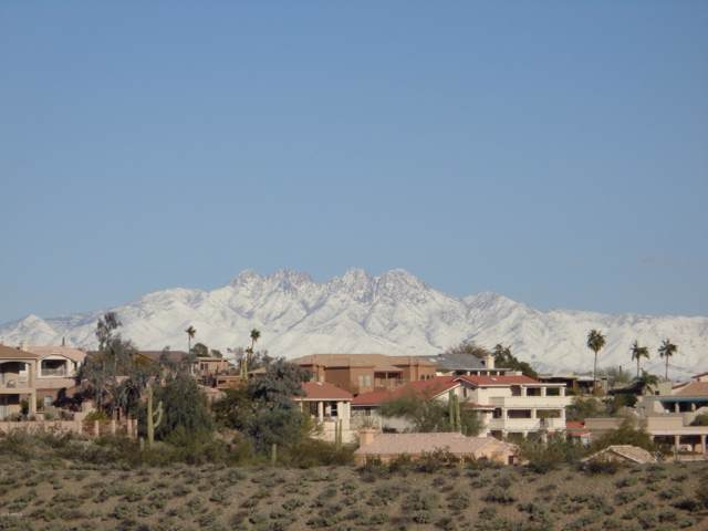 16654 N Aspen Drive, Fountain Hills, AZ 85268 (MLS #5994158) :: Klaus Team Real Estate Solutions