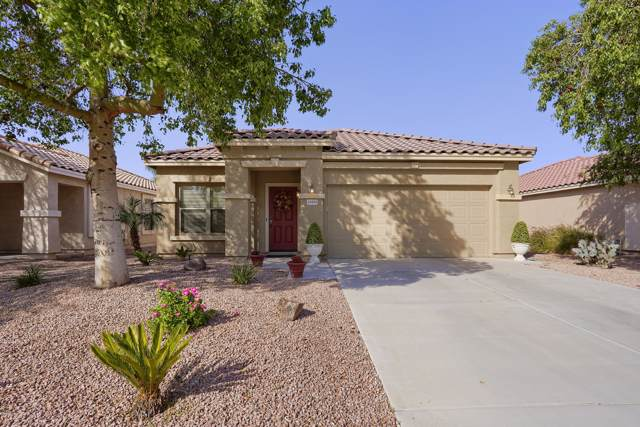 15444 W Cortez Street, Surprise, AZ 85379 (MLS #5994164) :: Nate Martinez Team