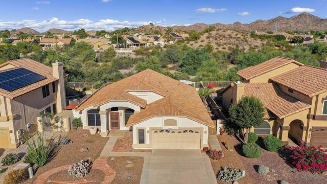 10955 S Dreamy Drive, Goodyear, AZ 85338 (MLS #5994201) :: Kortright Group - West USA Realty