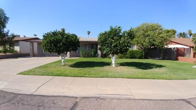 3440 E Laurel Lane, Phoenix, AZ 85028 (MLS #5994249) :: The Laughton Team