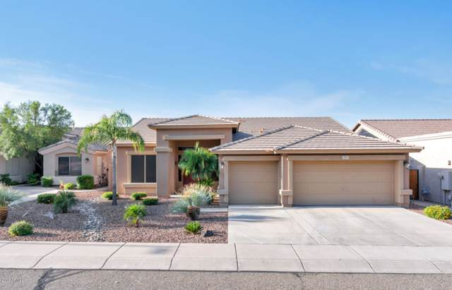 3909 W Range Mule Drive, Phoenix, AZ 85083 (MLS #5994264) :: The Laughton Team