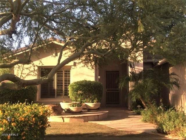 8228 W Via Montoya Drive, Peoria, AZ 85383 (MLS #5994271) :: Santizo Realty Group