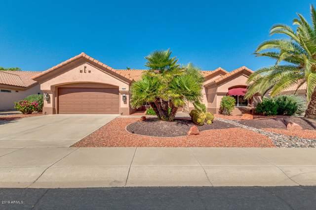 14414 W Domingo Lane, Sun City West, AZ 85375 (MLS #5994302) :: Nate Martinez Team