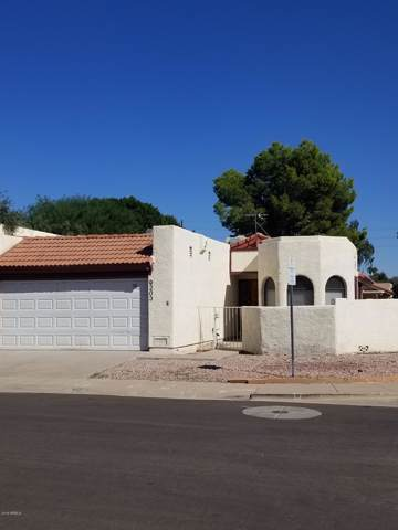 9203 N 51ST Lane, Glendale, AZ 85302 (MLS #5994326) :: The C4 Group