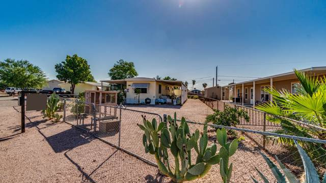 1435 E 23RD Avenue, Apache Junction, AZ 85119 (MLS #5994383) :: My Home Group