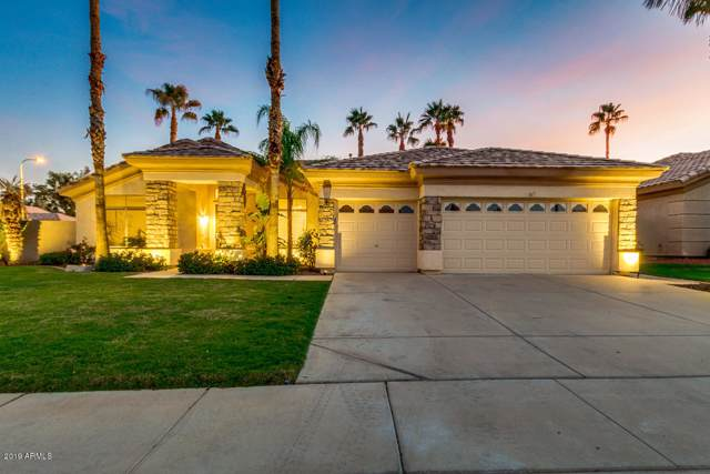 1283 W Indigo Drive, Chandler, AZ 85248 (MLS #5994427) :: Power Realty Group Model Home Center