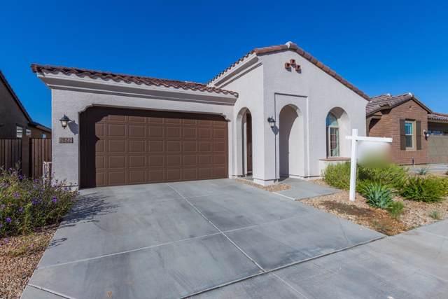 2822 E Fraktur Road, Phoenix, AZ 85040 (MLS #5994455) :: Santizo Realty Group