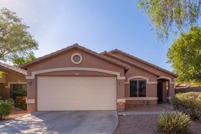 6036 N Milano Court, Litchfield Park, AZ 85340 (MLS #5994495) :: Kepple Real Estate Group