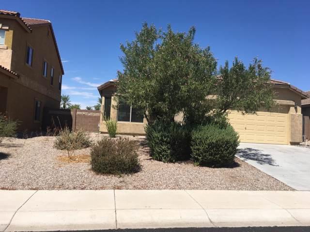 3918 N 294th Lane, Buckeye, AZ 85396 (MLS #5994496) :: Arizona 1 Real Estate Team