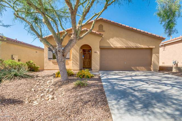 41240 N Hudson Trail, Anthem, AZ 85086 (MLS #5994602) :: Conway Real Estate