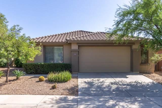 43133 N Outer Bank Drive, Anthem, AZ 85086 (MLS #5994650) :: Revelation Real Estate