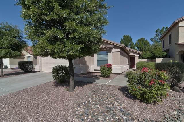 16862 W Statler Street, Surprise, AZ 85388 (MLS #5994728) :: Revelation Real Estate