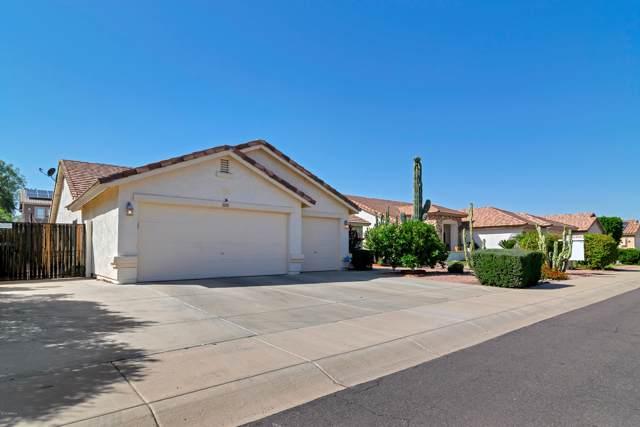 16184 N 159TH Avenue, Surprise, AZ 85374 (MLS #5994747) :: Revelation Real Estate