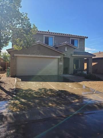 44779 W Paitilla Lane, Maricopa, AZ 85139 (MLS #5994748) :: Power Realty Group Model Home Center