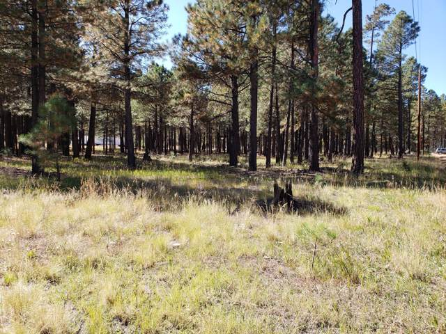 1960 Merryland Road, Forest Lakes, AZ 85931 (MLS #5994767) :: neXGen Real Estate