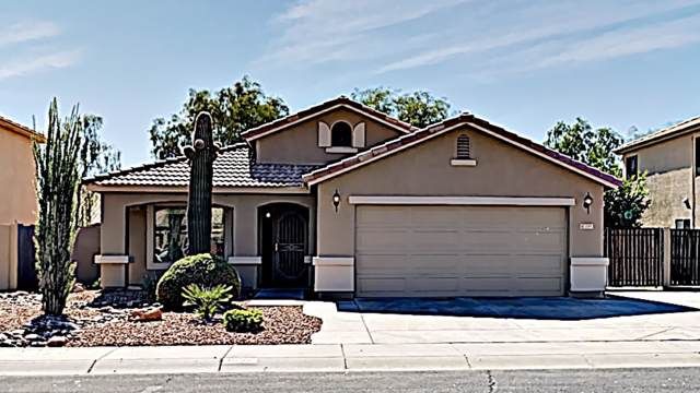 1557 E Alba Drive, Casa Grande, AZ 85122 (MLS #5994838) :: My Home Group