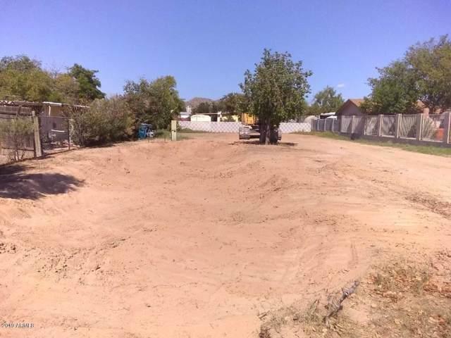 1816 E Grovers Avenue, Phoenix, AZ 85022 (MLS #5994858) :: Revelation Real Estate