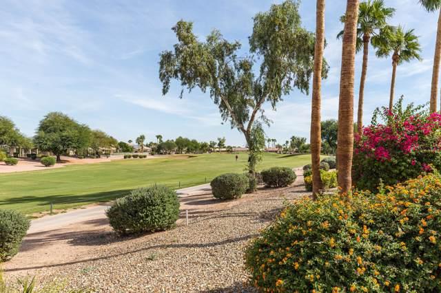 3633 N 149TH Avenue, Goodyear, AZ 85395 (MLS #5994894) :: Revelation Real Estate