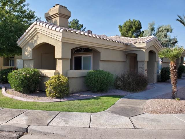 5335 E Shea Boulevard #1008, Scottsdale, AZ 85254 (MLS #5994901) :: The Pete Dijkstra Team