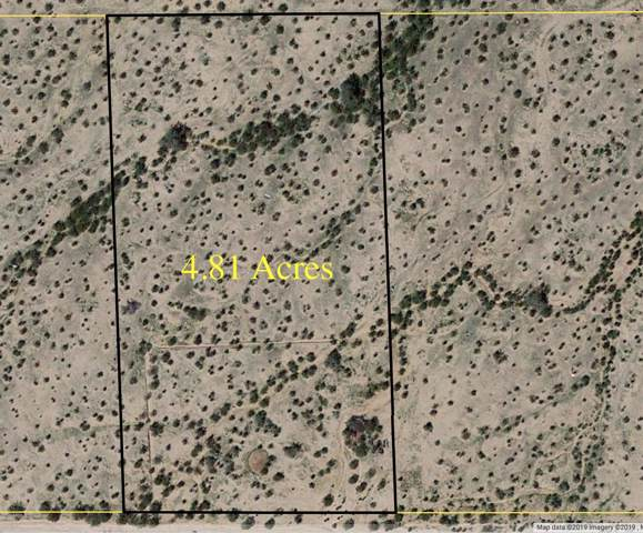 16 W Desert Garden, Maricopa, AZ 85139 (MLS #5994923) :: The Pete Dijkstra Team