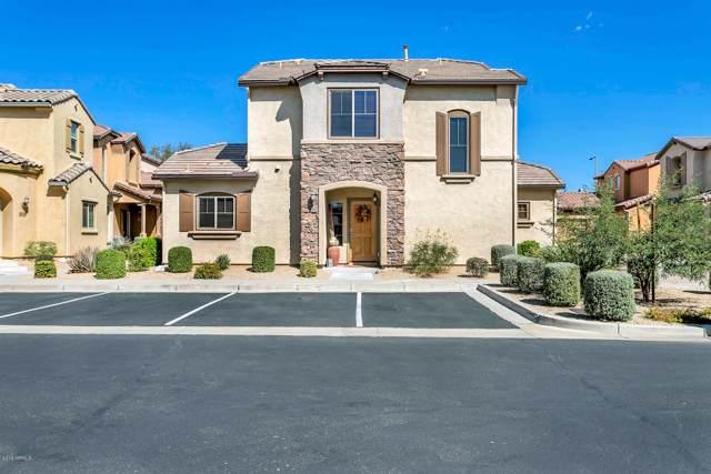 3956 E Cat Balue Drive, Phoenix, AZ 85050 (MLS #5994995) :: Revelation Real Estate
