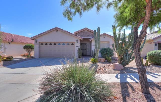 2411 E Hancock Trail, Casa Grande, AZ 85194 (MLS #5995027) :: Lux Home Group at  Keller Williams Realty Phoenix
