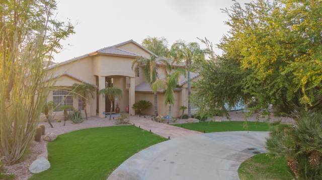 12038 S Appaloosa Drive, Phoenix, AZ 85044 (MLS #5995127) :: Relevate | Phoenix