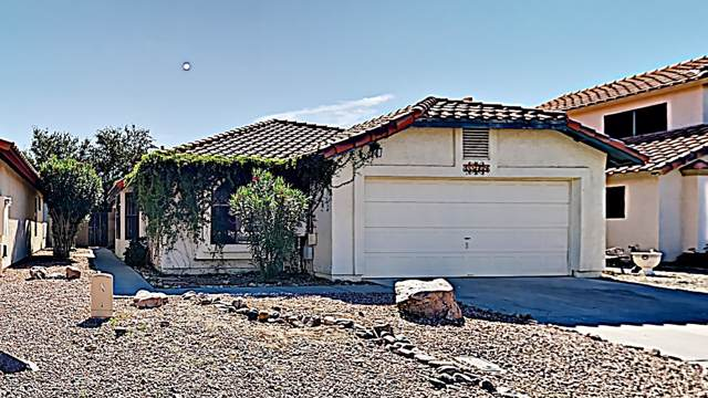 11605 W Sage Drive, Avondale, AZ 85392 (MLS #5995133) :: Devor Real Estate Associates