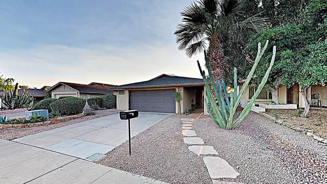 942 N 86TH Way, Scottsdale, AZ 85257 (MLS #5995137) :: My Home Group