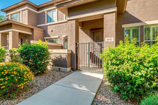 15240 N 142ND Avenue #1095, Surprise, AZ 85379 (MLS #5995141) :: Occasio Realty