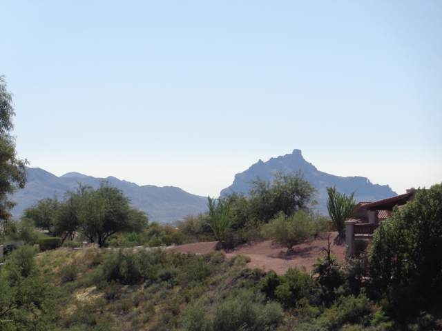 16050 N Overlook Court, Fountain Hills, AZ 85268 (MLS #5995161) :: Howe Realty