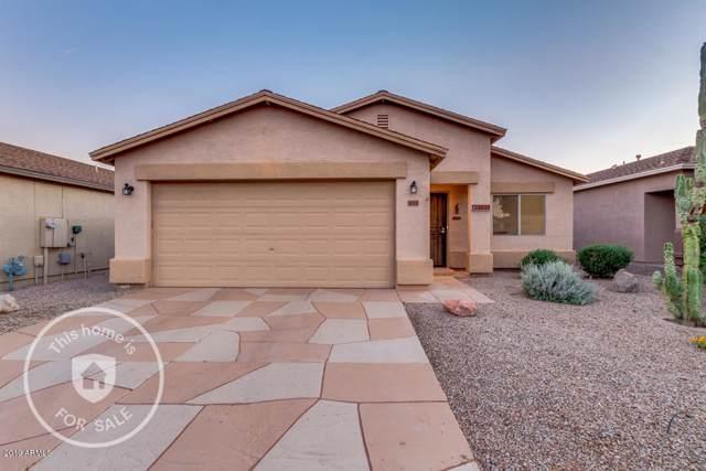 1011 E Denim Trail, San Tan Valley, AZ 85143 (MLS #5995163) :: Santizo Realty Group