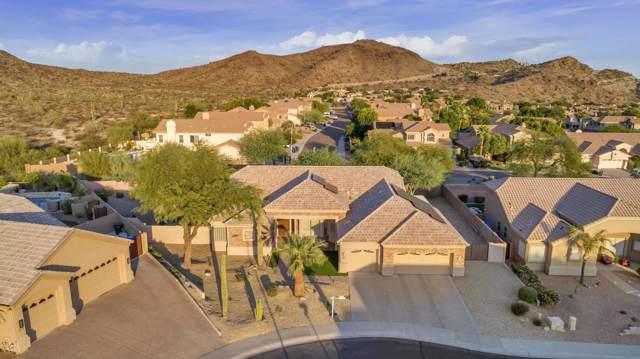 14015 S 10TH Street, Phoenix, AZ 85048 (MLS #5995214) :: Brett Tanner Home Selling Team