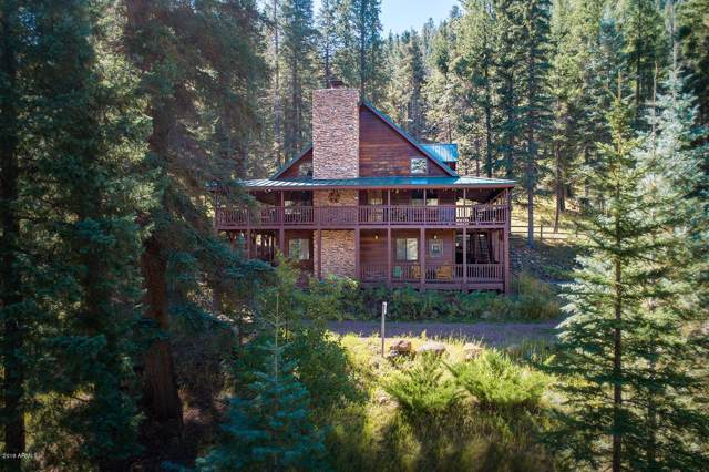 2 County Road 2040, Alpine, AZ 85920 (MLS #5995288) :: Santizo Realty Group