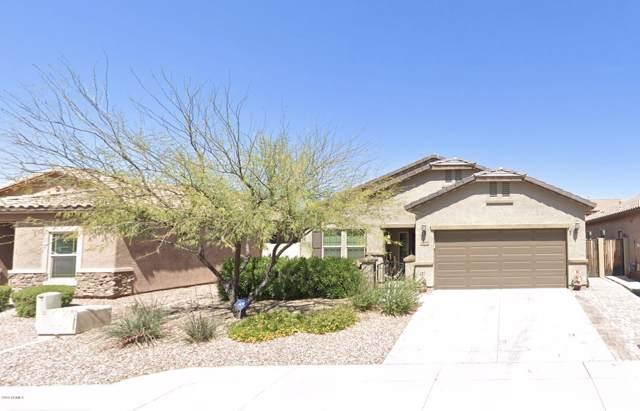 10808 W Cottontail Lane, Peoria, AZ 85383 (MLS #5995333) :: Devor Real Estate Associates