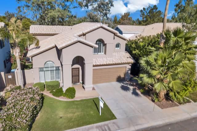 2272 W Myrtle Drive, Chandler, AZ 85248 (MLS #5995339) :: Lux Home Group at  Keller Williams Realty Phoenix