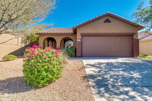 40767 N Trailhead Way, Phoenix, AZ 85086 (MLS #5995364) :: The Daniel Montez Real Estate Group